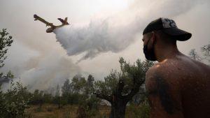 Τι ισχύει για τις ασφαλιστικές εισφορές πυρόπληκτων στην Εύβοια- To ΦΕΚ του υπουργείου Εργασίας